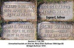 Eugene E. Sullivan