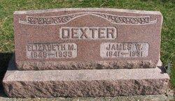 Elizabeth Mildred <i>Johnson</i> Dexter
