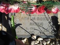 Damasia <i>Montoya</i> Armijo