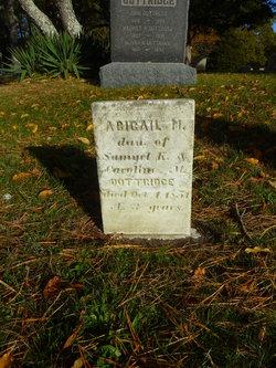 Abigail M Dottridge