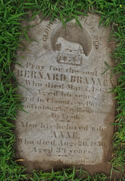 Ann Brannen