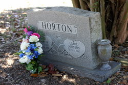 John Pink Horton, Jr