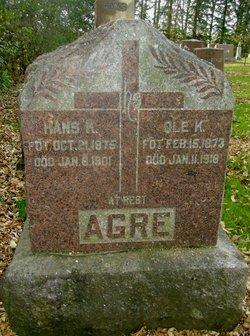 Hans K Agre
