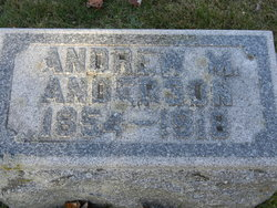Andrew M Anderson
