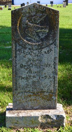 Dr Allen H Clark