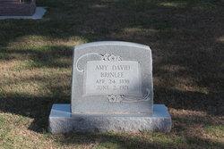 Amy David Brinlee