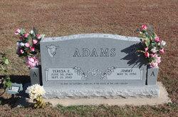 Teresa Elizabeth <i>Wheeler</i> Adams