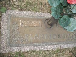 Willard Edward Blankenship