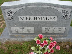 Harry Sleighsinger