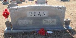 David Michael Bean