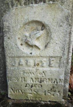 James E. Amerman