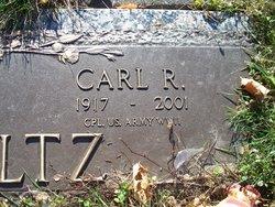 Carl R Waltz