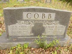 Mary <i>Blevins</i> Cobb