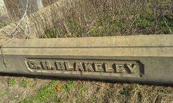 George H Blakeley