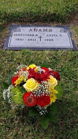 Alexander Adams