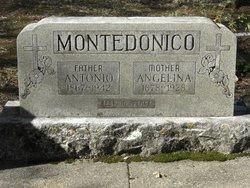 Antonio Giovanni Montedonico