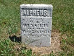 Alpheus Binger