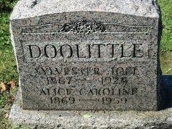 Sylvester Joel Doolittle