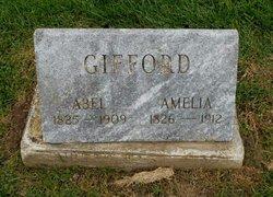 Amelia Gifford