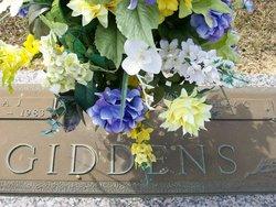 A J Giddens