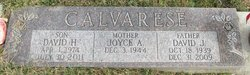 David H. Calvarese