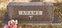 Sarah Elizabeth <i>Chambless</i> Adams