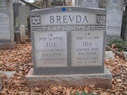Ida Brevda