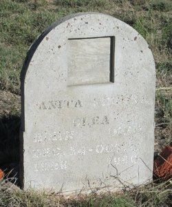 Anita <i>Segura</i> Blea