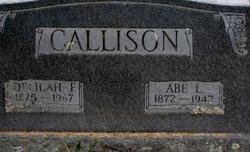 Abraham Lincoln Callison