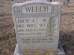 Miles Birdwell Welch