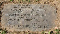 William Hughes Bill Bronston, Sr