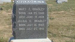 Julius C. Bradley