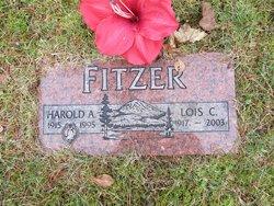 Harold A Fitzer