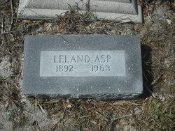 Leland Asp