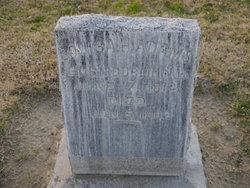 Louisa Hephzibah <i>Gowing</i> Adams