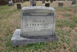 Thomas A. Etheridge