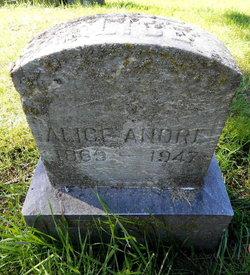 Alice E Andnel