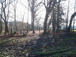 Iron Hill Cemetery