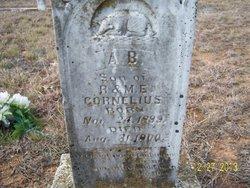 Andrew Burton Cornelius