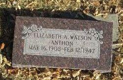 Elizabeth Antoinette <i>Watson</i> Anthon
