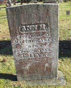 Ann M Adams