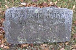 John Cain Andrews