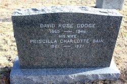 David Rose Dodge