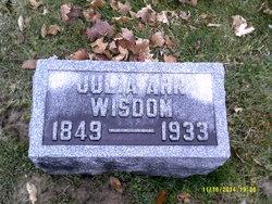 Julia Ann Wisdom