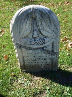 George Hutchinson Turner