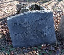 Dr David S. Garnett