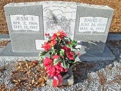 Jesse F. Ross
