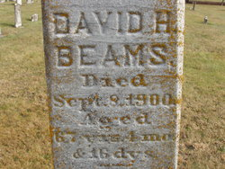 David H Beams