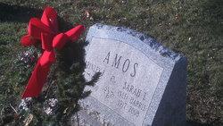 Sarah L <i>Harris</i> Amos