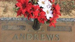 Aaron Franklin Andrews